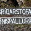 Un regard sur… la littérature nordique