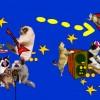 Le Club des Chats à Jean-Macé !