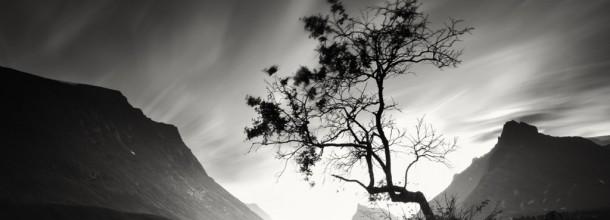 Eloge de la lenteur : Alain Baumgarten, photographe