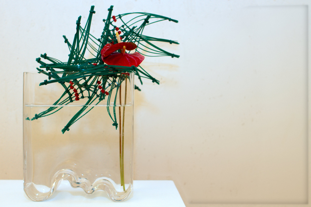 Ikebana - Photo de Frans de Wit