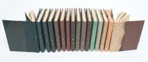 Collection La France gastronomique reliée par Angélique Michel (atelier BM Metz) en peaux de carpe de différents couleurs. (BM Metz, Res IN-12 834)