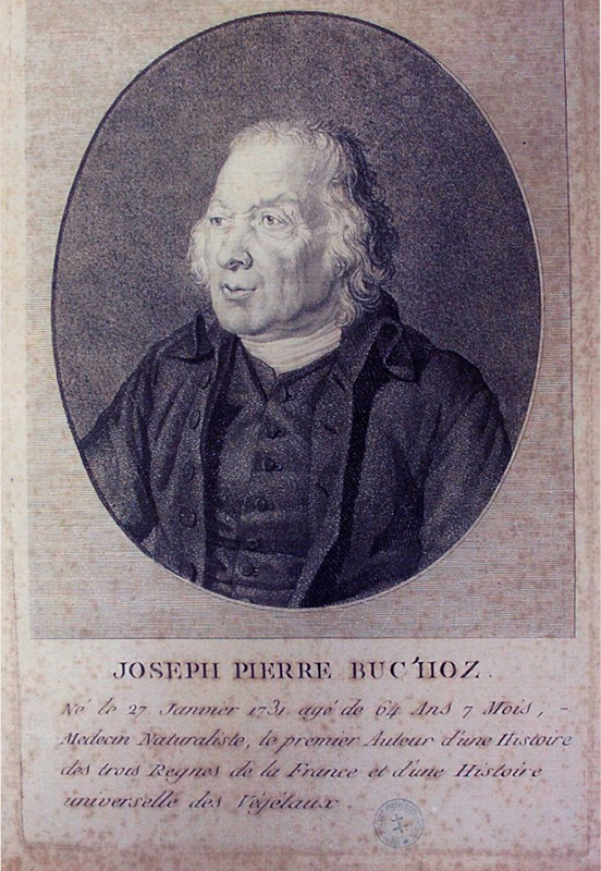 Portrait Buc'hoz - Musée Lorrain de Nancy - Photo F. Vernier