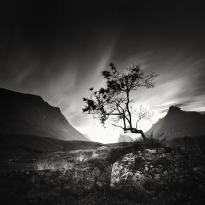 Reaidda Laponie (c) Alain Baumgarten