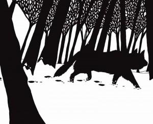 Image loup noir