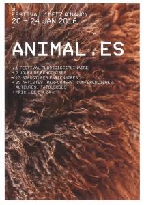 Festivale Animales
