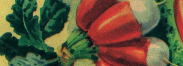 Rendez-vous aux jardins 2015 : Maman, c'est quand la saison des poires ?